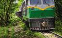 现场派:最慢小火车