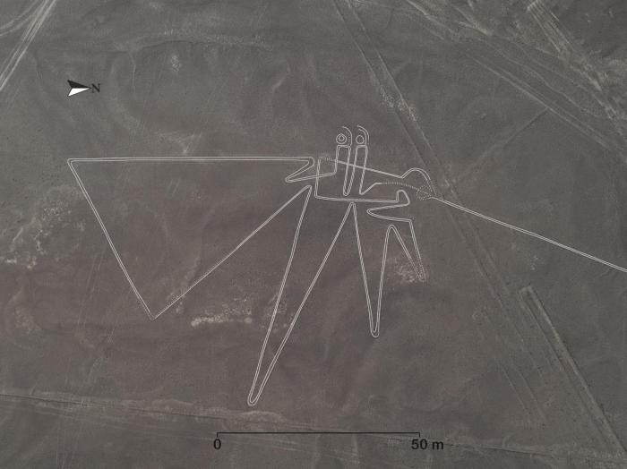 日本研究员称发现143条纳斯卡线