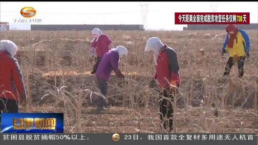 张掖:产业链上建支部 助力脱贫党旗红