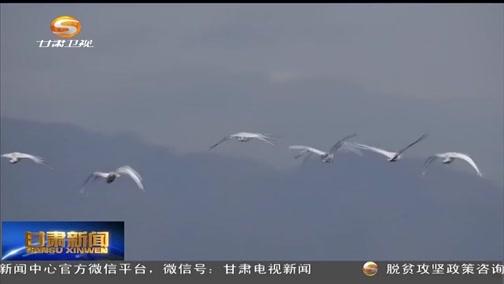 [田东县残疾人联合会新闻]阿克塞苏干湖湿地鸟类聚集风景宜人