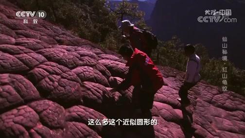 《地理·中国》 20191224 仙山秘境·红山龟纹