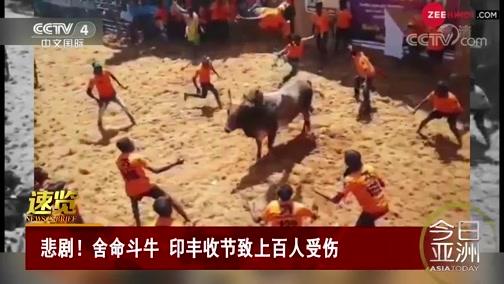 [今日亚洲]速览 悲剧!舍命斗牛 印丰收节致上百人受伤