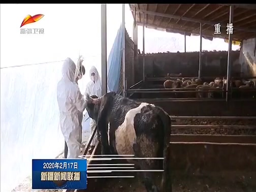 [新疆新闻联播]抓好畜牧生产 助力多产增收