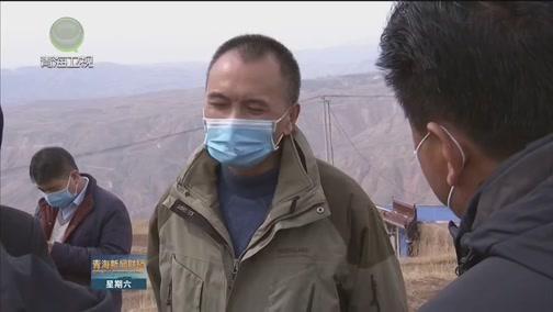 [青海新闻联播]农业专家出实招 助推马铃薯增产增收