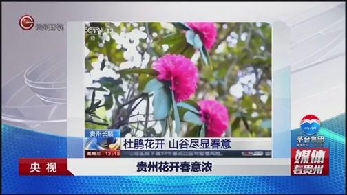 [贵州新闻联播]媒体看贵州 央视:贵州花开春意浓