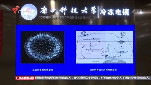 [广东新闻联播]深圳科研团队:首次观察到新冠病毒的真实形貌