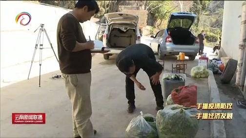 """[云南新闻联播]开""""直播""""强服务 畅通农产品销路"""