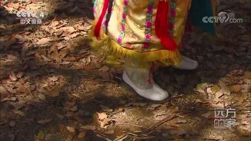 《远方的家》 20200326 世界遗产在中国 九寨沟:多彩阿坝中的人间仙境
