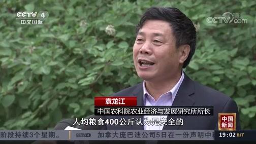 """[中国新闻]以保求稳 稳中求进 保粮食能源安全 筑牢经济发展""""安全线"""""""