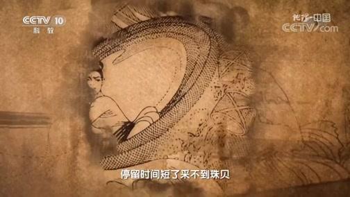 [地理·中国]合浦历史上著名的珠池大采珠事件