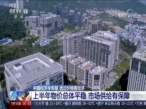 [朝闻天下]中国经济半年报 透过价格看经济央视网2020年07月10日 06:15