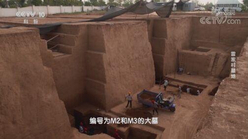 《探索·发现》 20200722 雷家村墓地