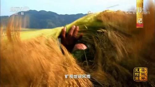 [中国影像方志]凤阳篇 后记