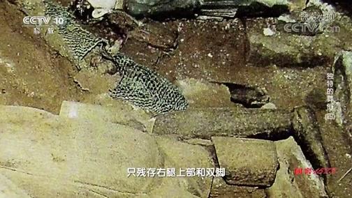 [探索·发现]下八里村出土较为完整的木雕人偶葬具