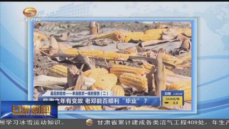 [甘肃新闻]央媒看甘肃:智力帮扶 助农脱贫