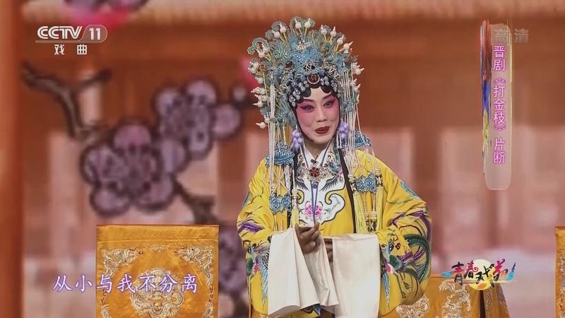 晋剧打金枝片断 表演:杨丽丽 青春戏苑