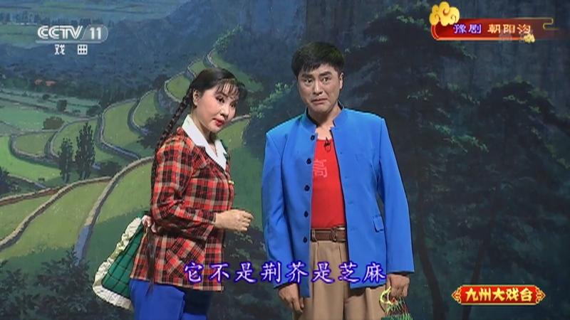 豫剧朝阳沟 主演:杨红霞 盛红林 九州大戏台 20210823