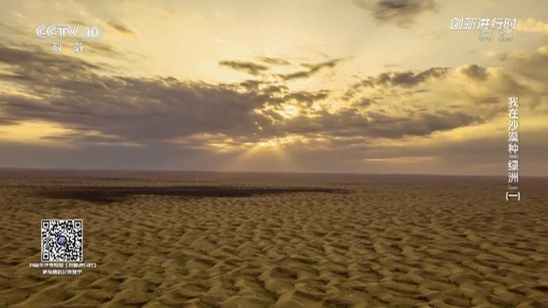 """《创新进行时》 20210826 我在沙漠种""""绿洲""""(一)"""
