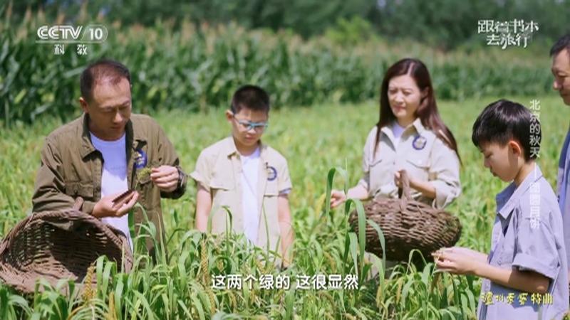 《跟着书本去旅行》 20210921 北京的秋天——团圆月饼