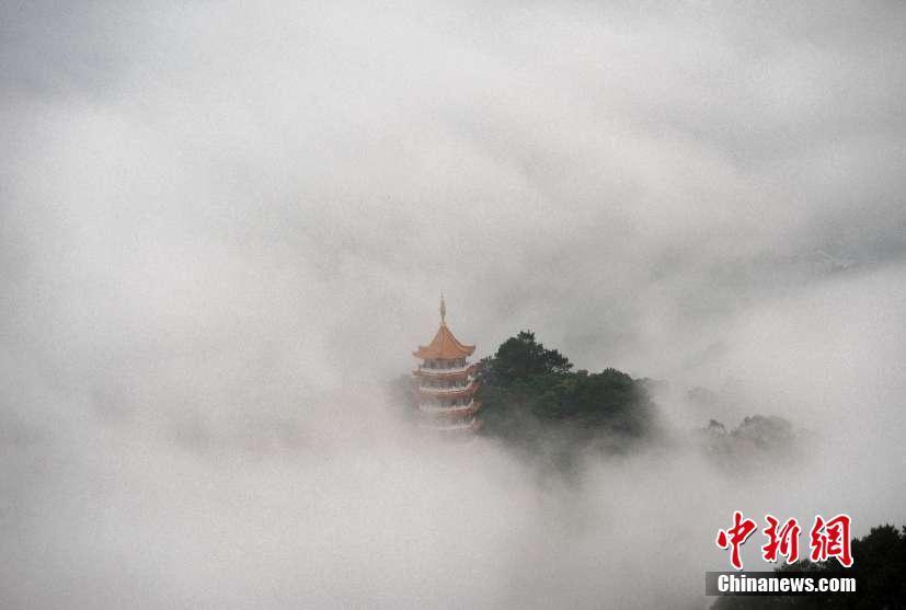 广西梧州云雾缭绕美如仙境