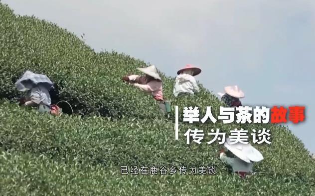 茶香连两岸台湾冻顶乌龙茶身世之谜 00:02:08