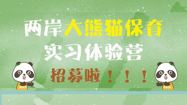 """""""2019熊猫夏令营""""即将开营!快来参加!"""