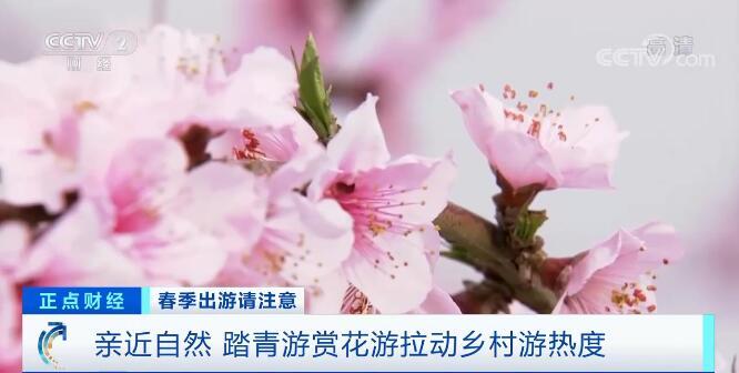 """今年春天""""赏花经济""""成亮点 旅游业提振消费信心"""