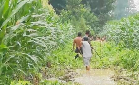 记者探访河南中牟万滩镇 村民积极开展生产自救