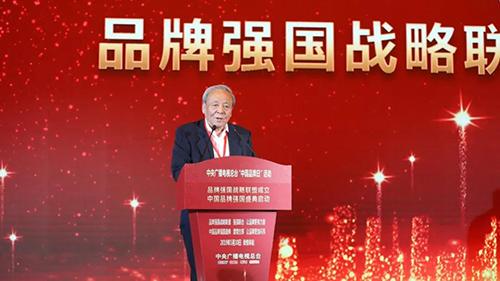 中国欧洲经济技术合作协会会长徐秉金致辞