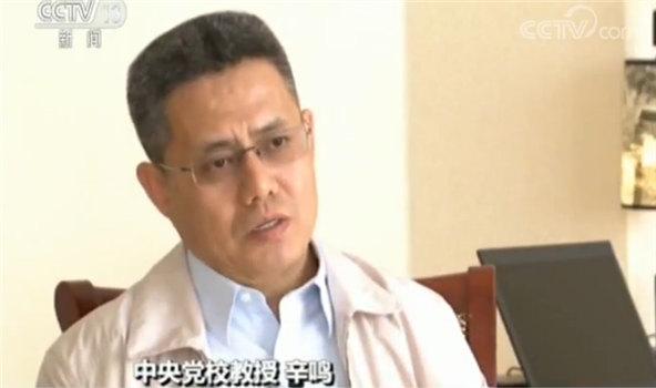 中央党校教授辛鸣