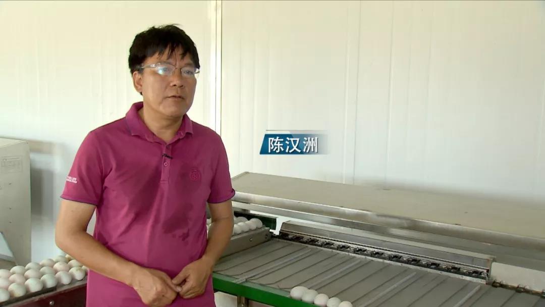 做好家乡特色产业 陈汉洲一年售额达到600多万元