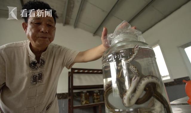 杨洪昌泡蛇酒