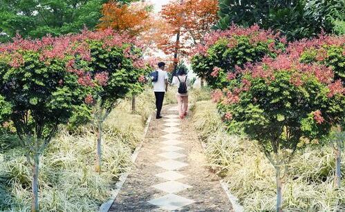 ●仙岳山北一环游步道