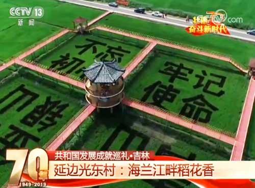 吉林光东村:海兰江畔稻花香