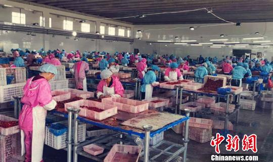对标国际乌龙江内向型农业前5月出心额破25亿元