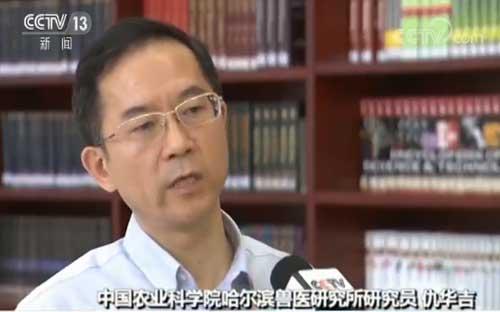 中国农科院发布猪场复养技术 指导科学复养