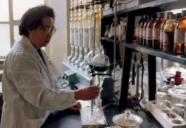 屠呦呦在实验室做实验
