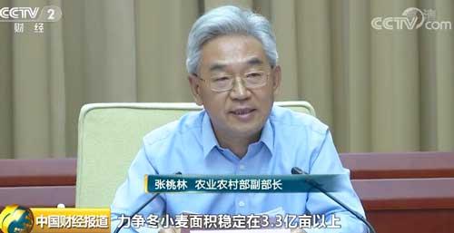 悦博娱乐农村部:力争冬小麦面积稳定在3.3亿亩以上