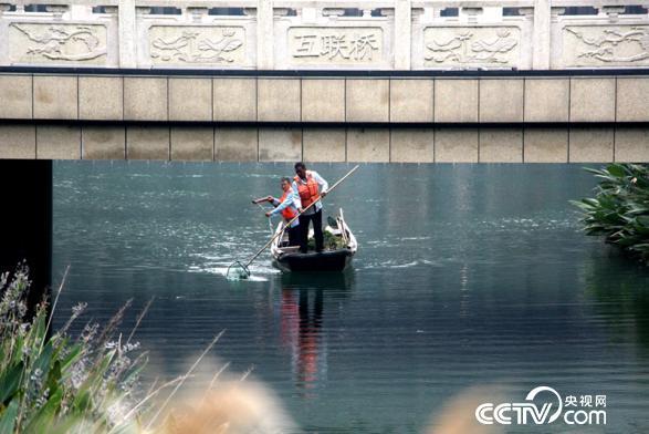 工作人员正在清理河面(王甲铸 摄)
