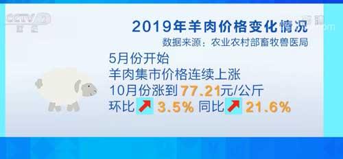 北京:消费季来临 羊肉价涨量稳