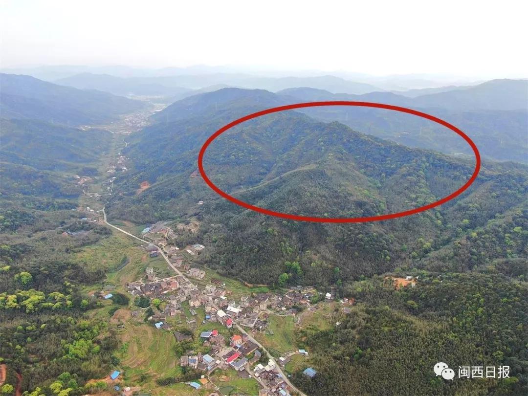 东肖隘头村(右为400-500米低山)