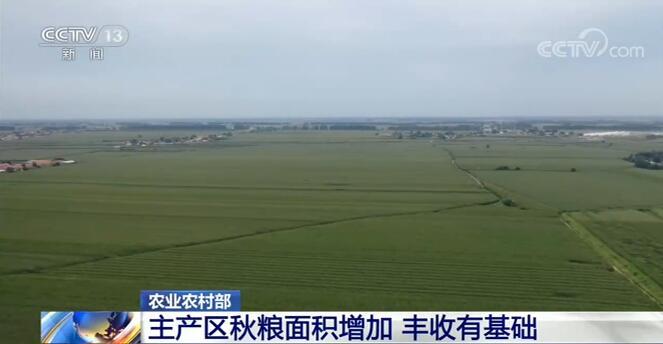 农业乡村部:中国秋粮丰收有基础 晚稻栽插结束面积稳中有增