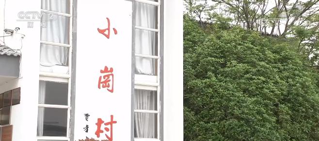 安徽小岗村:农村改革再深化 乡村振兴添活力