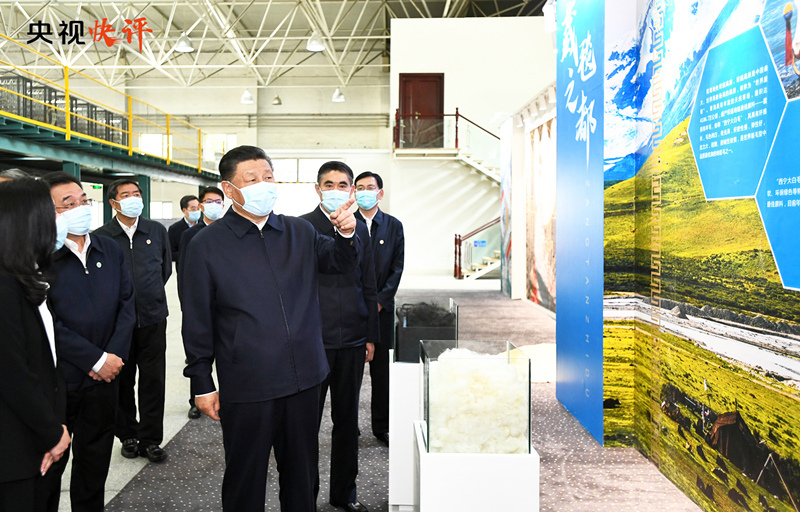 """【央視快評】牢記""""國之大者"""",在推進青藏高原生態保護和高質量發展上取得新成就"""