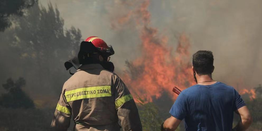 希腊政府发紧急通报 消防团队正应对51场山林大火插图