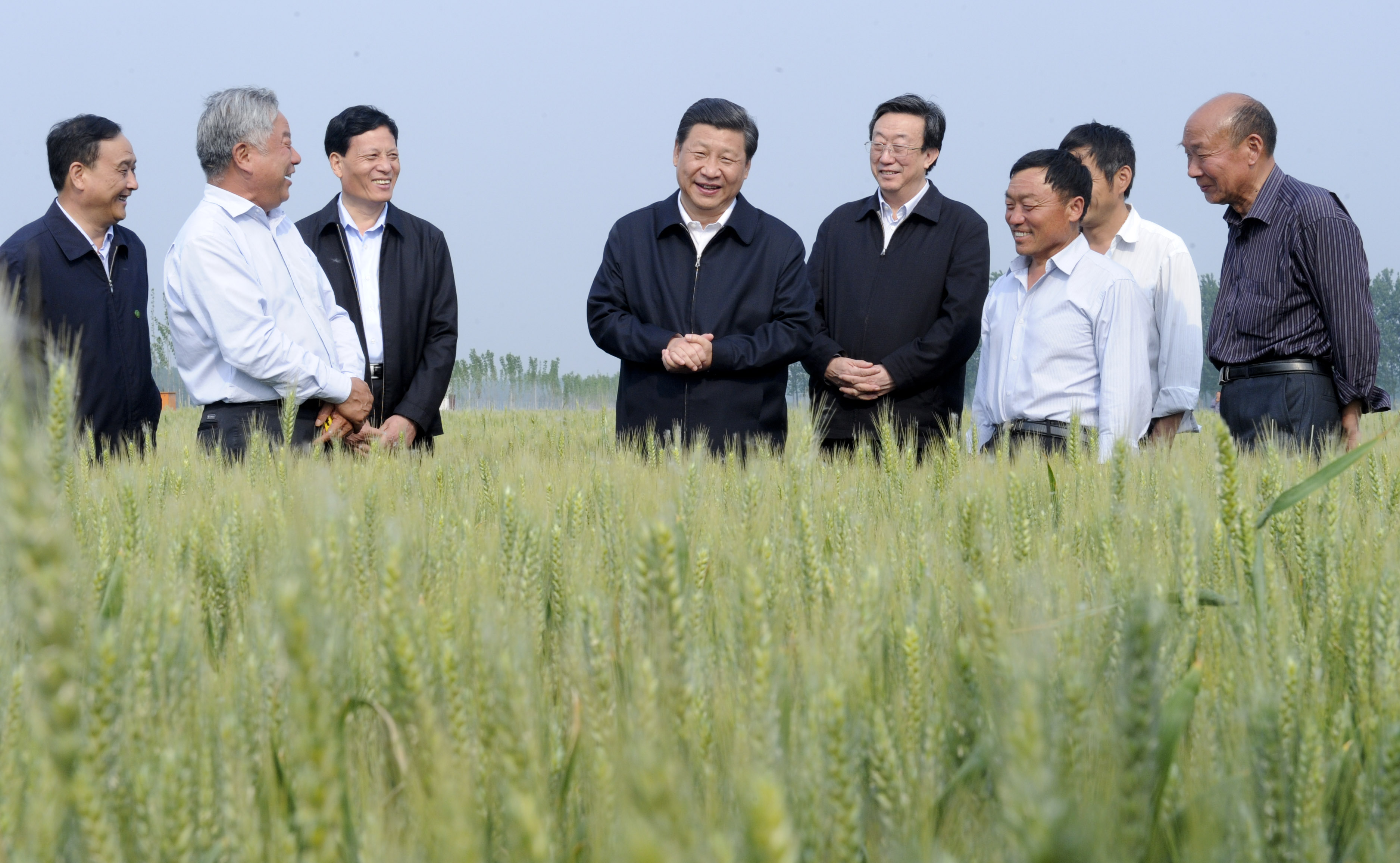 2014年5月9日,习近平总书记在尉氏县张市镇高标准粮田察看小麦长势。