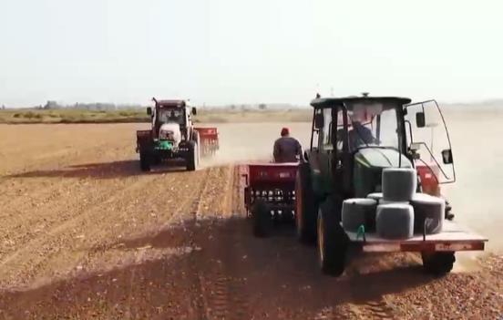 行距误差不超五厘米 新疆种植户全程机械化播种冬小麦